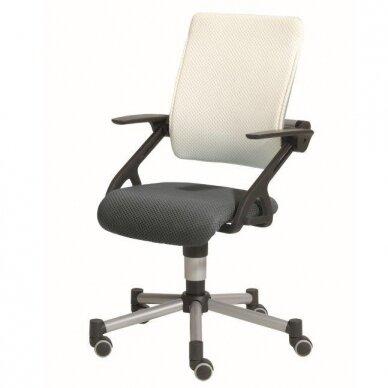 """Reguliuojama kėdė """"TIO SITNESS"""" 17"""