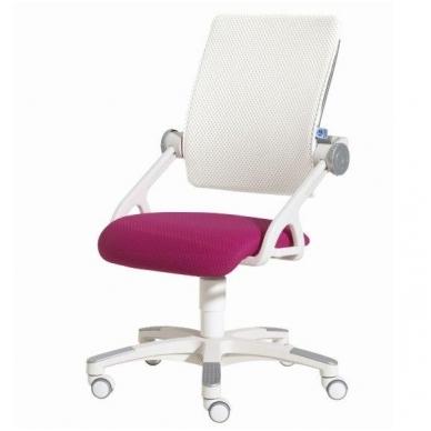 """Reguliuojama kėdė """"YVO"""" 12"""