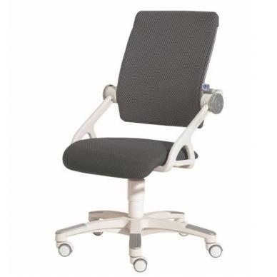"""Reguliuojama kėdė """"YVO"""" 17"""